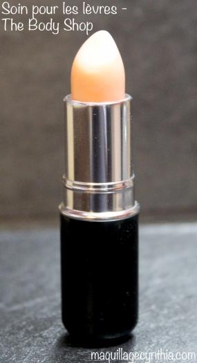 Soin pour les lèvres The Body Shop