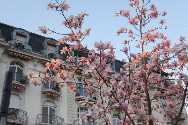 Hôtel Montreux