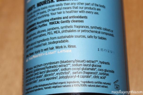 Shampooing Antioxydant au bleuet Mistik